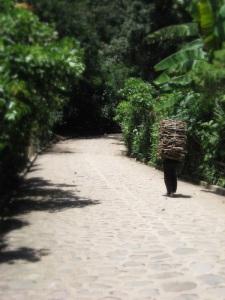 guatemalanmanwithload